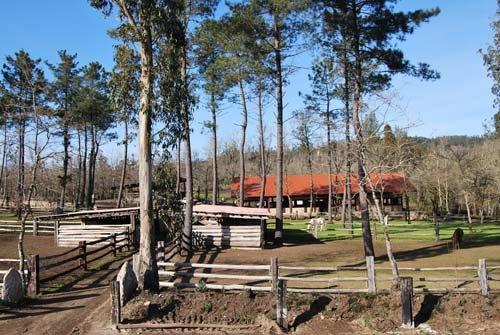 Granja escuela Bergando, granjas escuela en Galicia